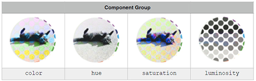 Component Group